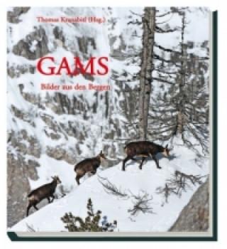 Gams - Bilder aus den Bergen