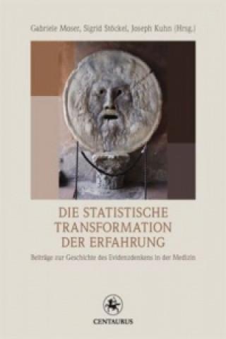 Die statistische Transformation der Erfahrung