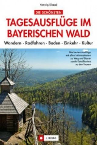 Die schönsten Tagesausflüge im Bayerischen Wald