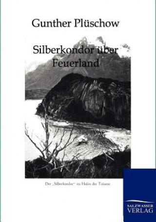 Silberkondor UEber Feuerland