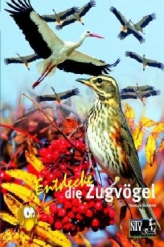 Entdecke die Zugvögel