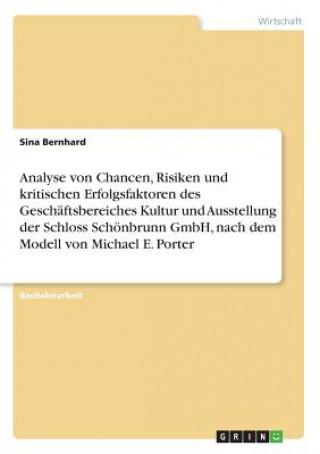Analyse von Chancen, Risiken und kritischen Erfolgsfaktoren des Geschaftsbereiches Kultur und Ausstellung der Schloss Schoenbrunn GmbH, nach dem Model