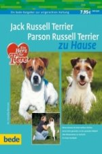 Jack Russell Terrier, Parson Russell Terrier zu Hause