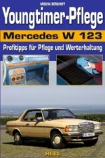 Youngtimerpflege Mercedes W 123