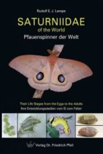 Saturniidae of the World. Pfauenspinner der Welt