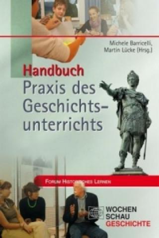 Handbuch Praxis des Geschichtsunterrichts, 2 Bde.