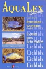 Malawisee-Cichliden. Cichlids from Lake Malawi