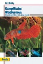 Kampffische, Wildformen