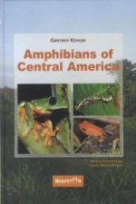 Amphibians of Central America