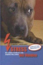Stress bei Hunden