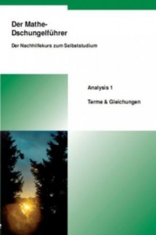 Analysis 1, Terme & Gleichungen