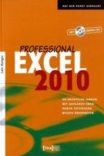 Excel 2010 Professional, m. CD-ROM
