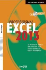 Excel 2013 Professional, m. CD-ROM