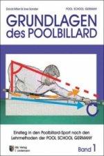 Grundlagen des Poolbillard