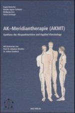 Ak-Meridiantherapie (AKMT)