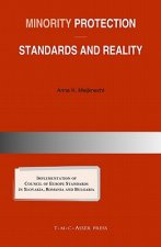 Minority Protection: Standards and Reality