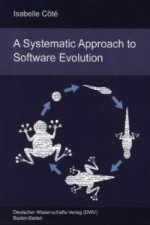 A Systematic Approach to Software Evolution