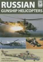 Flight Craft: Russian Gunship Helicopters
