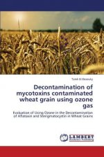 Decontamination of mycotoxins contaminated wheat grain using ozone gas