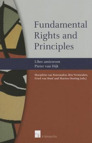 Fundamental Rights and Principles