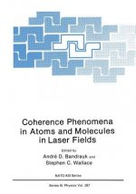 Coherence Phenomena in Atoms and Molecules in Laser Fields, 1