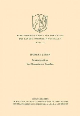 Strukturprobleme Der OEkumenischen Konzilien