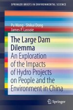 The Large Dam Dilemma