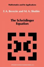 The Schrödinger Equation, 1