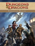Dungeons & Dragons Forgotten Realms