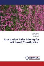 Association Rules Mining for AIS based Classification