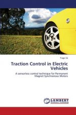 Traction Control in Electric Vehicles