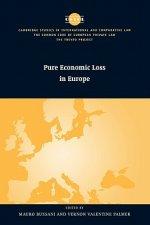 Pure Economic Loss in Europe