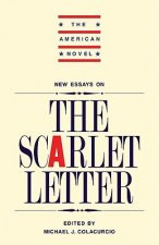 New Essays on 'The Scarlet Letter'