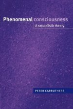 Phenomenal Consciousness