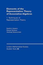 Elements of the Representation Theory of Associative Algebras: Volume 1