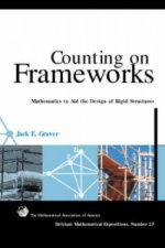Counting on Frameworks