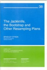 The Jackknife, the Bootstrap, and Other Resampling Plans