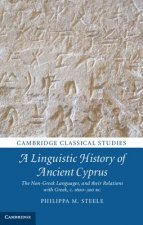 Linguistic History of Ancient Cyprus