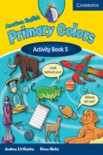 American English Primary Colors 5 Activity Book