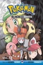 Pokemon Black and White, Vol. 13