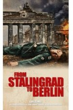 From Stalingrad to Berlin: The Illustrated Edition