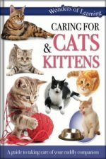 Wonders of Learning: Cats and Kitten Care