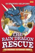 Imaginary Veterinary: The Rain Dragon Rescue