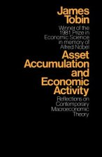 Asset Accumulation and Economic Activity