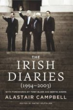 Irish Diaries (1994-2003)