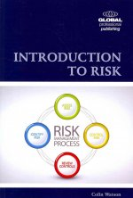 Introduction to Risk