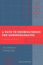 A Path to Combinatorics for Undergraduates