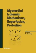 Myocardial Ischemia: Mechanisms, Reperfusion, Protection