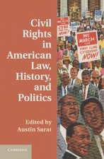 Civil Rights in American Law, History, and Politics