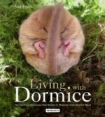 Living with Dormice